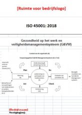 ISO 45001 template